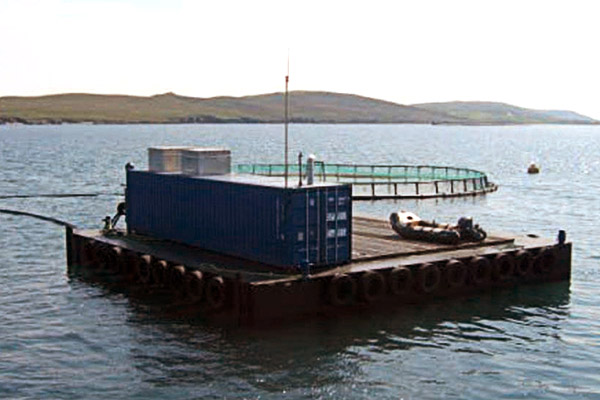 Fish Feed Barge, Yardno. 145
